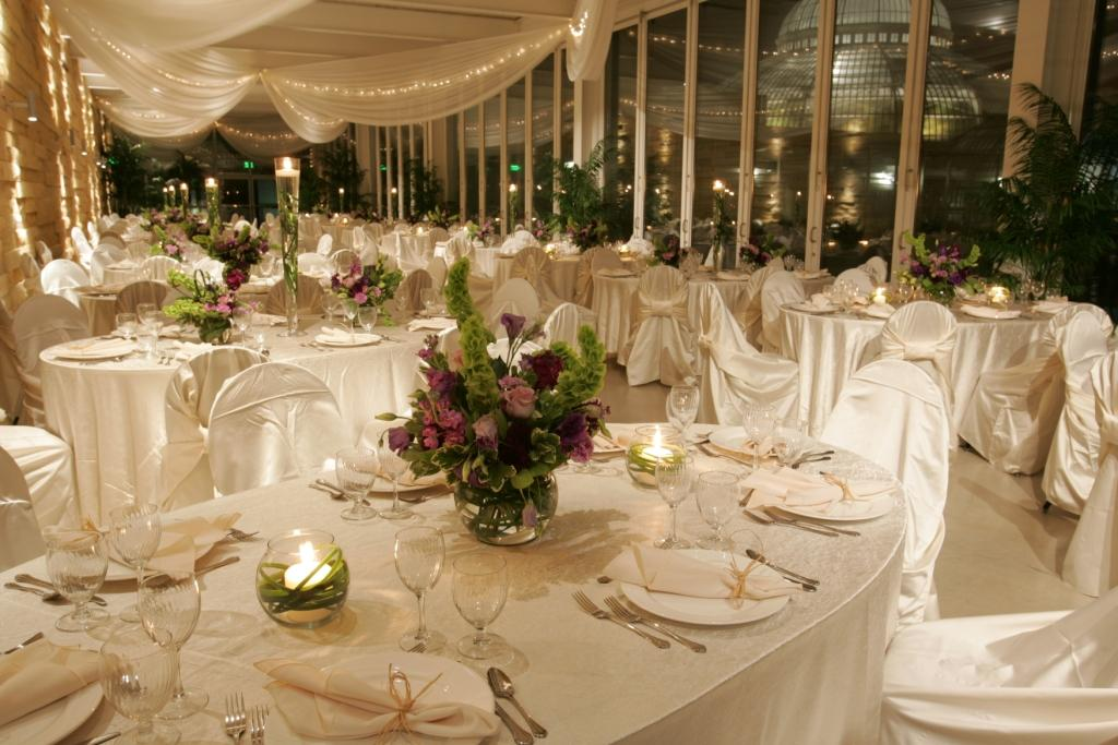 Host An Event Como Park Zoo And Conservatory Como Park Zoo And