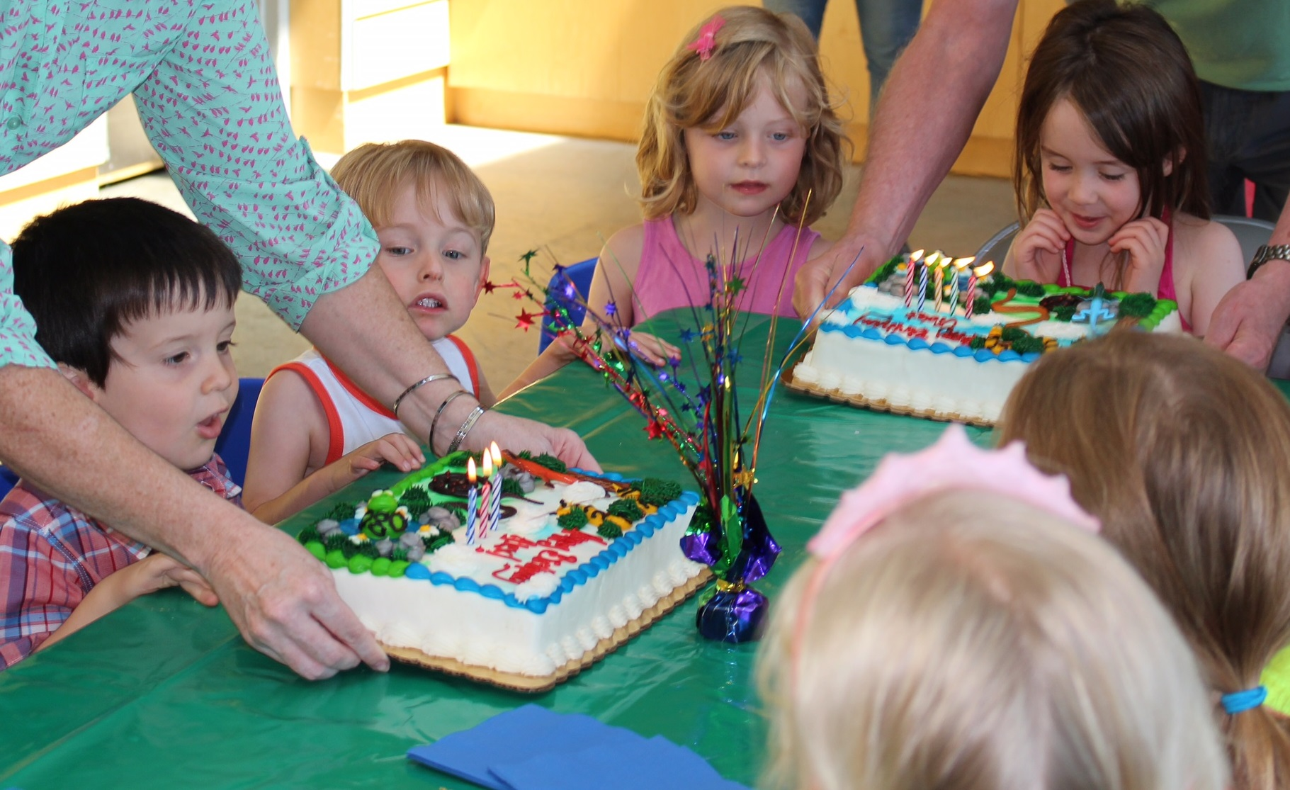 birthday parties - como park zoo and conservatory como park zoo and