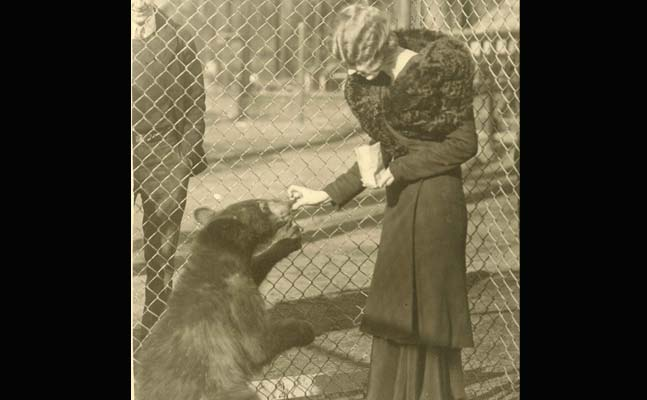 a woman in what looks like 1920's garb with a huge fur wrap around her shoulders feeds a black bear