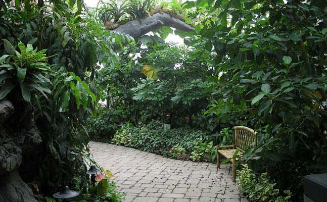 Tropical encounters como park zoo and conservatory como for Indoor gardening minneapolis