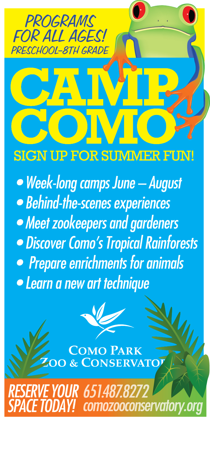 2013 Camp Ad Color-1