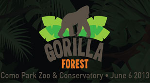 Gorilla Forest