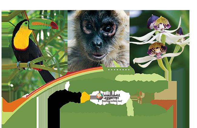 Travel-program-Panama-web-header - Copy