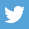 footer_social_twitter
