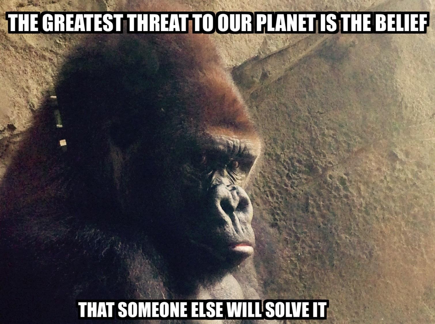 annabelles-conservation-meme