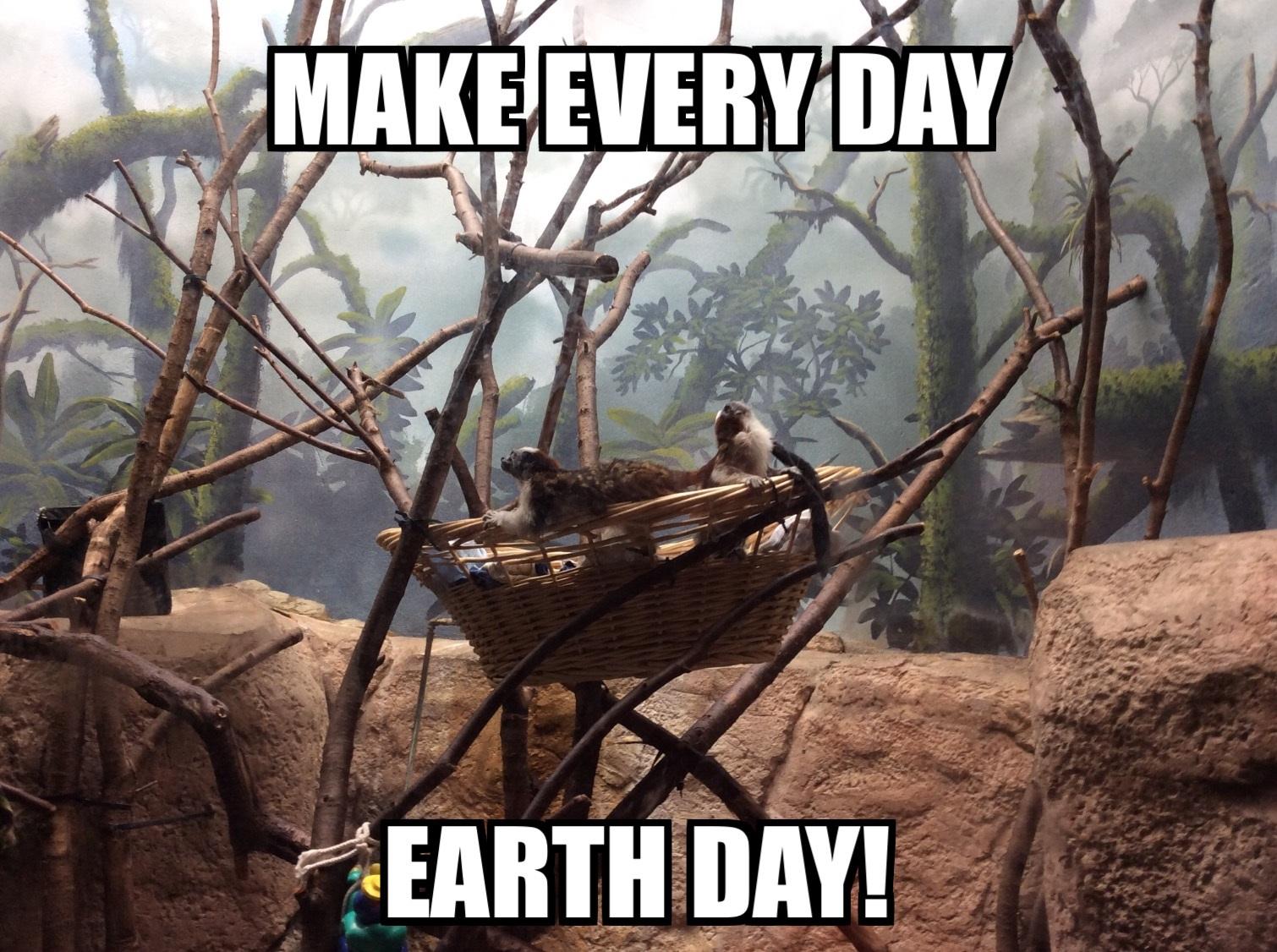 declans-conservation-meme