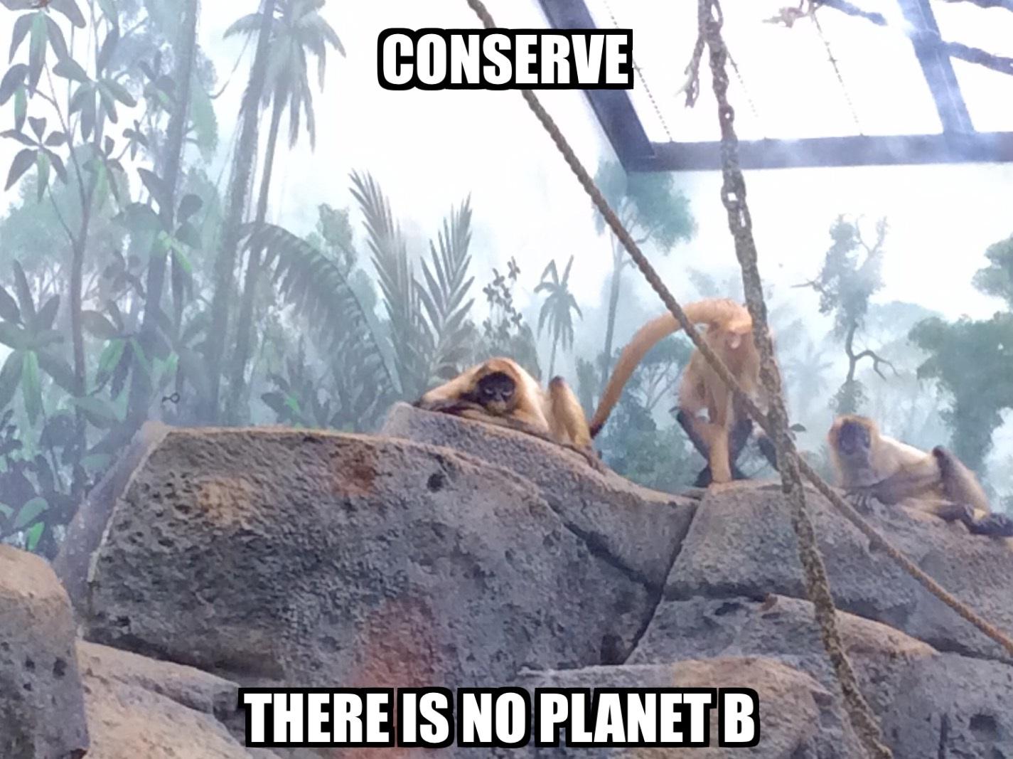 elizabeths-conservation-meme