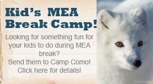MEA Camp