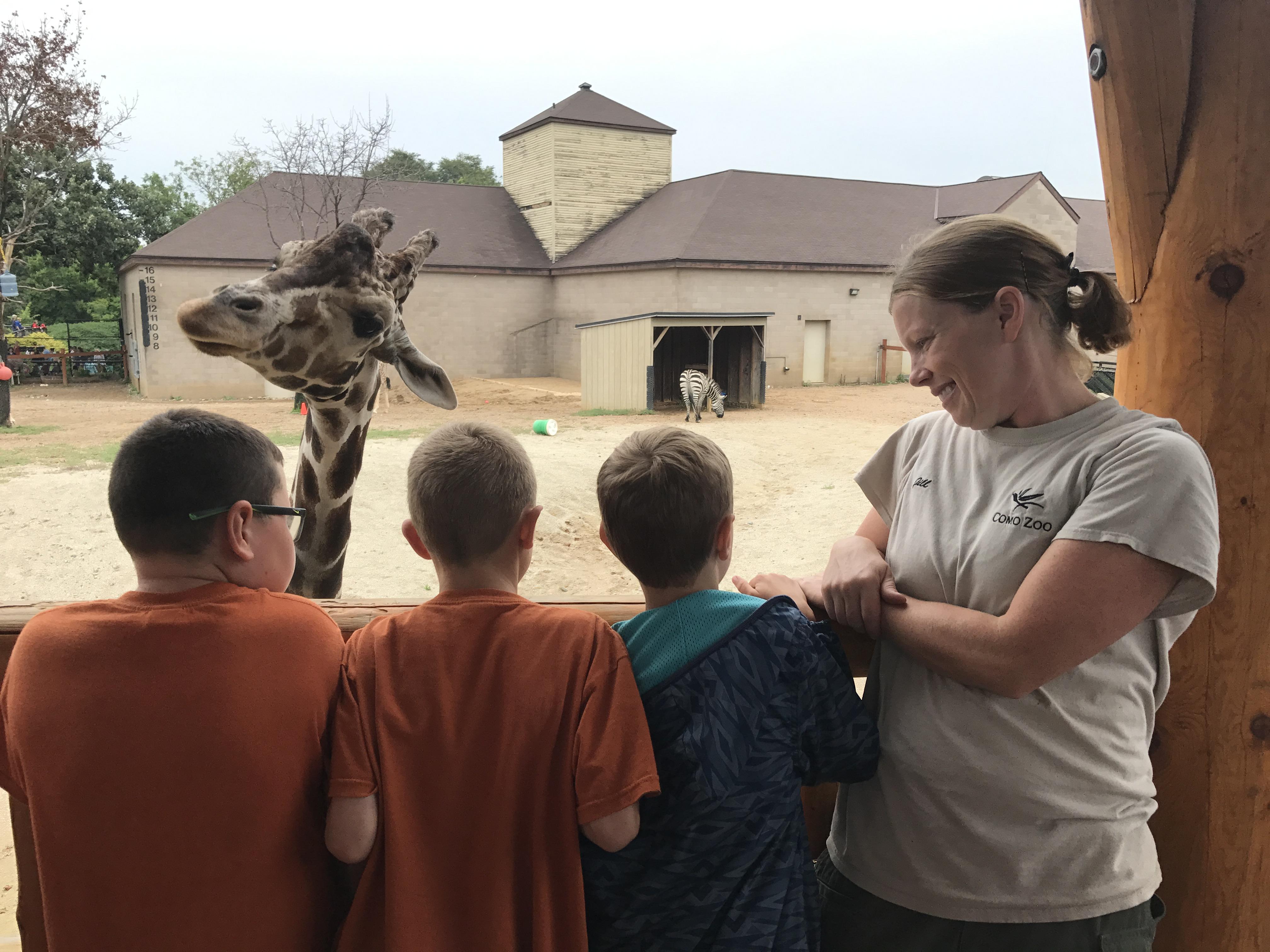 Camp Como Como Park Zoo And Conservatory Como Park Zoo And