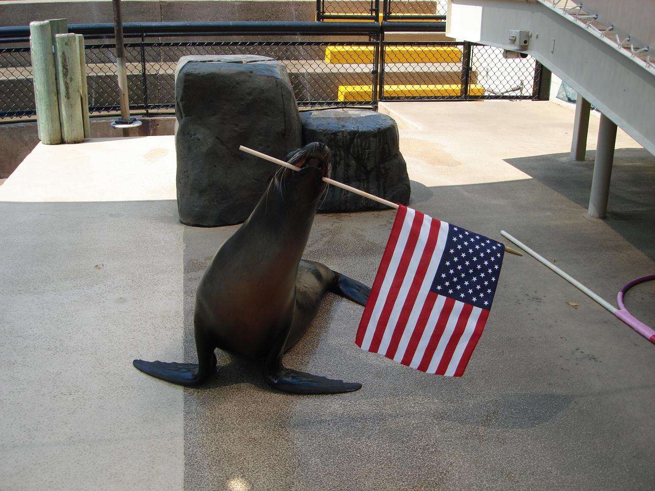 Sparky Waving USA Flag